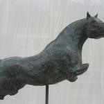 meer paarden0028.jpg