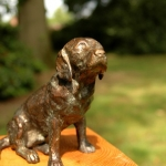 Labrador-Bob3.jpg