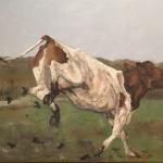 Blije koe.jpg
